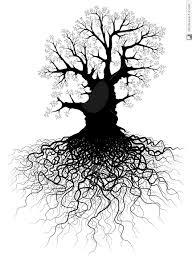 kích thích bộ rễ