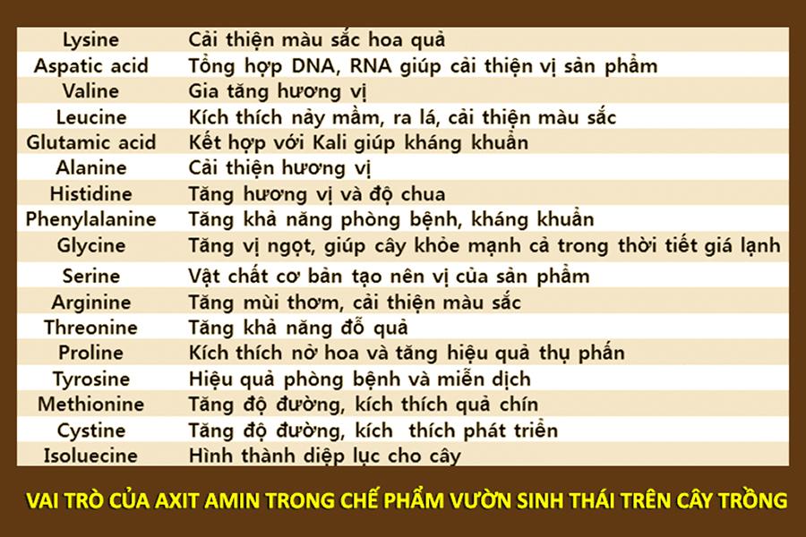 pro-amino-chuyen-lon-trai-tap-doan-vinasa01