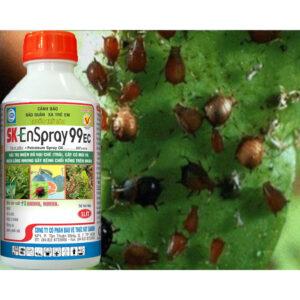 sk-enspray-99-ec-vinasa9.jpg