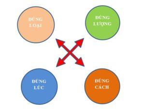 nguyên tắc 4 đúng